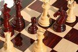 Шахматы снова просятся в олимпийскую семью