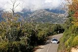 WRC возвращается на Корсику?