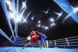 Европейские игры. Манукян и Петров шагают в четвертьфинал
