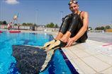 Украинец стал двукратным призером чемпионата мира по фридайвингу
