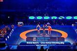 Украинский борец завоевал бронзу на чемпионате мира