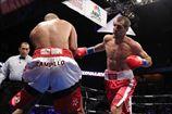 Ковалев может драться с Фонфарой или Бремером, но не Стивенсоном