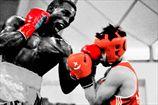 WBC против участия профессионалов на ОИ-2016